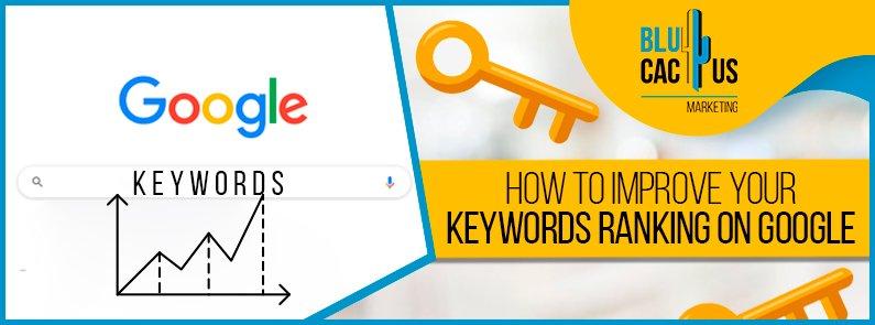 BluCactus - improve keyword rankings - title