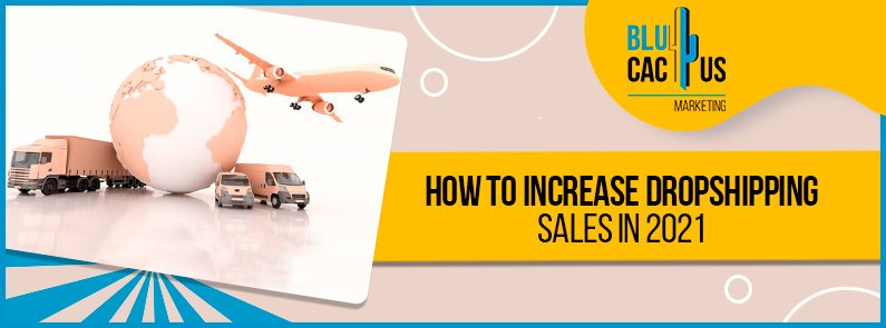 Blucactus how to increase dropshipping sales in 2021