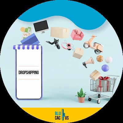 Blucactus - Minimizing the shopping cart abandon rate