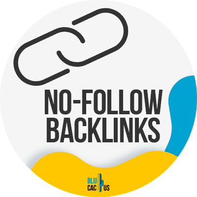 BluCactus - guide-to-backlinks - important data