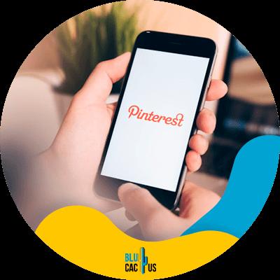 BluCactus - marketing with Pinterest - important data