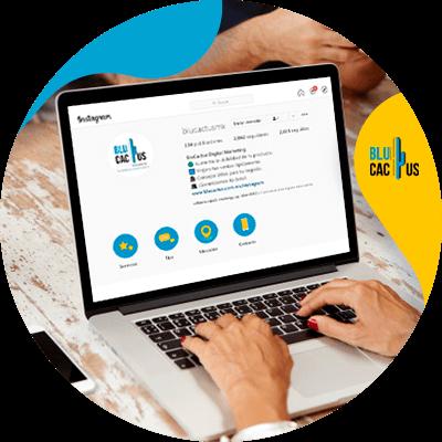 Blucactus - Make Backlinks In 2021 - Profile links