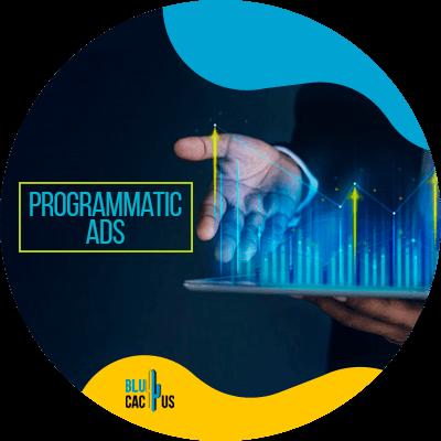 BluCactus - Programmatic ads