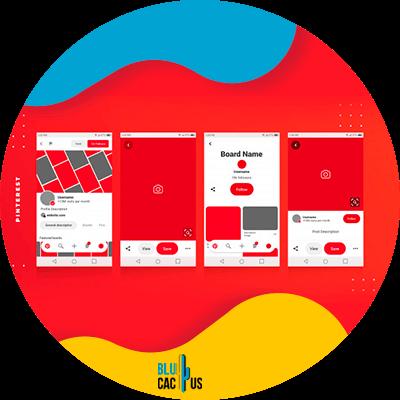 BluCactus - image sizes for social media - important data