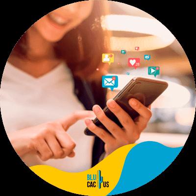 Blucactus - social media marketing