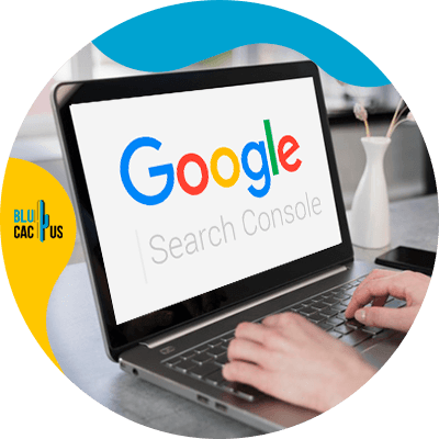 BluCactus - Submit your site to the Google search console