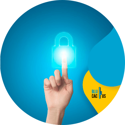 Blucactus - website security