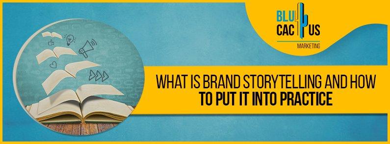 BluCactus - Brand storytelling - title