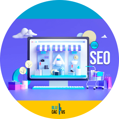 Blucactus - why seo is important for your e-commerce website