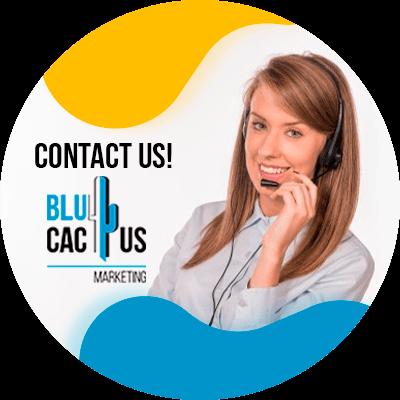 BluCactus - Marketing guide for TikTok - contacto