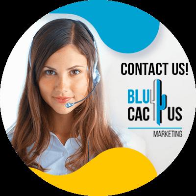 BluCactus - improve keyword rankings - important data