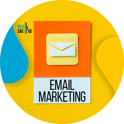 Blucactus - email marketing