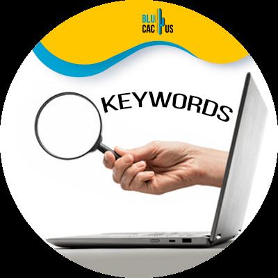 Blucactus - keyword research in seo
