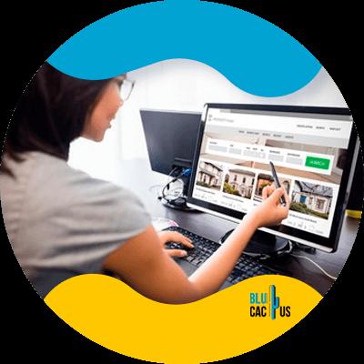 BluCactus - ideal website for your e-commerce - important data