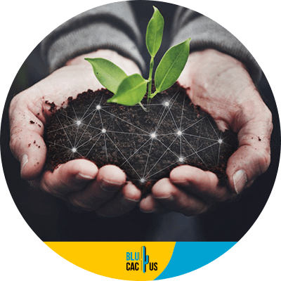 Blucactus - sustainability for environment conservation