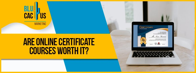 Blucactus - are online certificate courses worth it banner