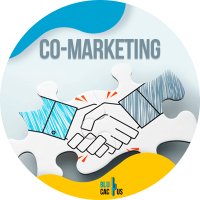 Blucactus - but first, what is co-marketing?