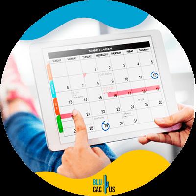 Blucactus - have a content calendar