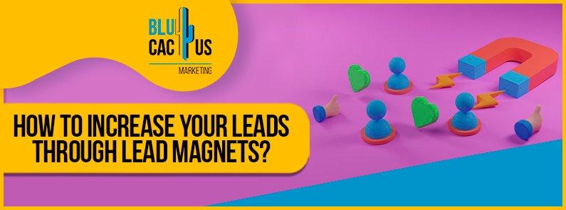BluCactus - Lead Magnets - banner