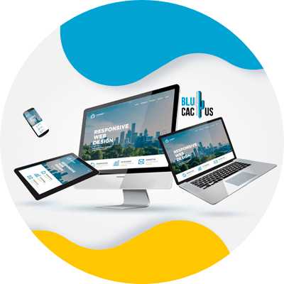 Blucactus-Responsive-Web-Design-Templates