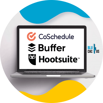 Blucactus - schedule your posts in advance