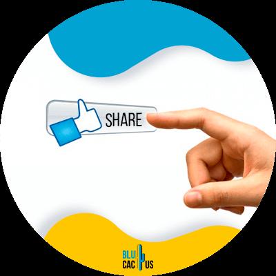 Blucactus - share content