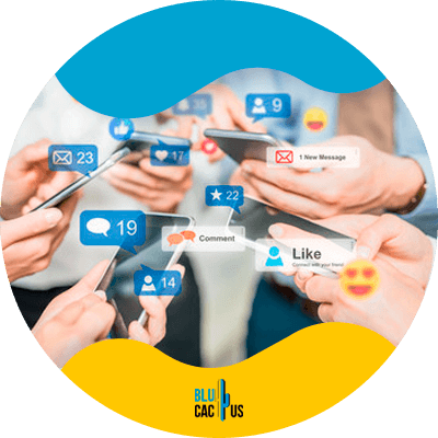 Blucactus - understand the reason for being on social media