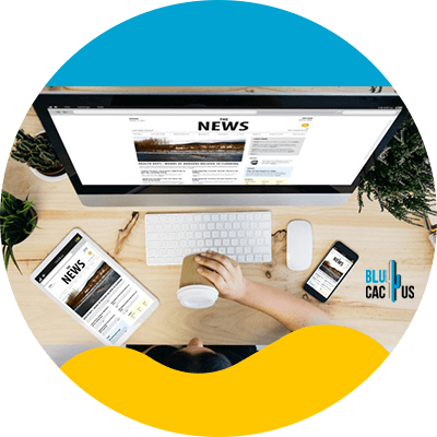 Blucactus-Web-Design-and-Content-Marketing