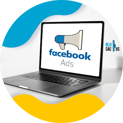 Blucactus - what is facebook audience manager 2