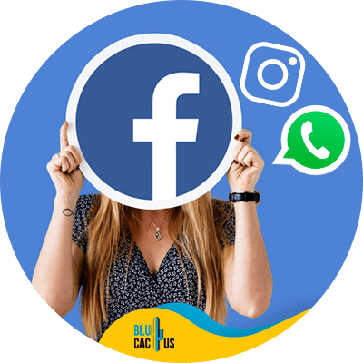 Blucactus - what is facebook audience manager