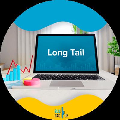 BluCactus - long-tail keyword - important data