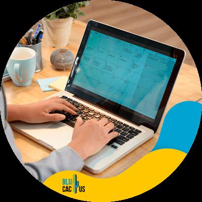 Blucactus - what is a social media content calendar