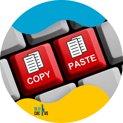 Blucactus-What is plagiarism in Professional content writing?