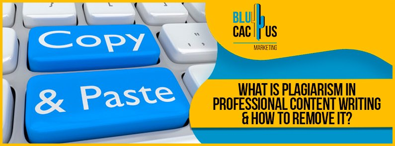 Blucactus-What-is-plagiarism-in-Professional-content-writing-_-how-to-improve-it-cover-page