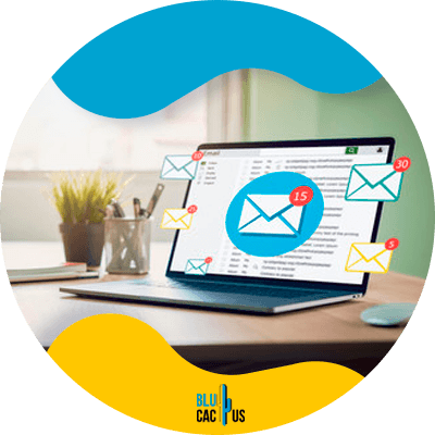 BluCactus -Should I implement email marketing in my business? - email