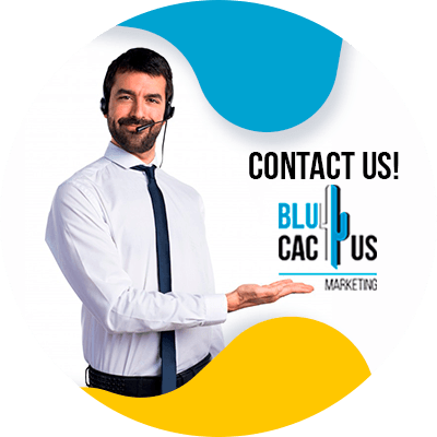 Blucactus - Contact us - SEO Guide For Hotel and Restaurants Owners