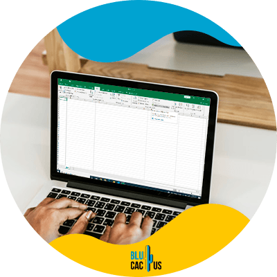 BluCactus - How to carry out a data analysis through Excel - data analysis