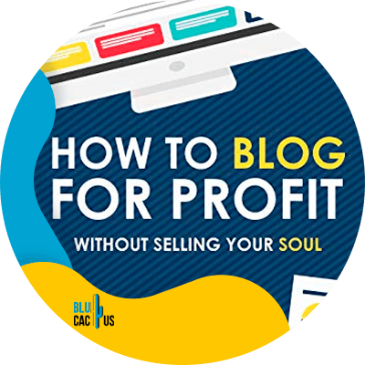 Blucactus-5-How-To-Blog-For-Profit-Without-Selling-Your-Soul