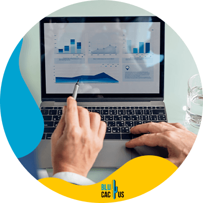 BluCactus - create a marketing team - important data