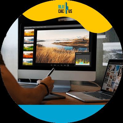 Blucactus-Imágenes - Cómo escribir un post para tu blog y obtener tráfico orgánico