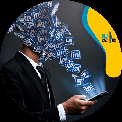 Blucactus-7-Networking