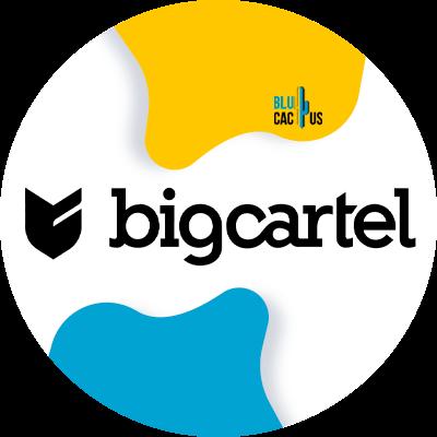 Blucactus-9-Big-cartel