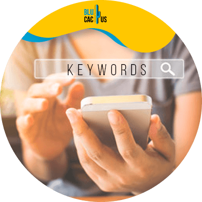 Blucactus-High-volume-and-low-competitive-keywords - How To Do Keyword Research To Get 10,000+ Visitors Per Month
