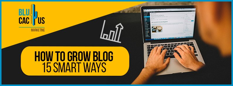 Blucactus-How-to-grow-blog-cover-page