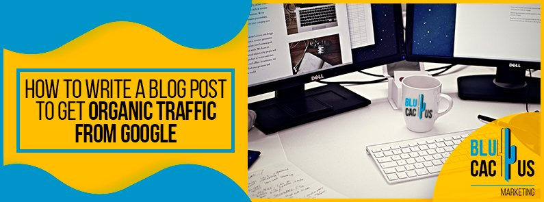 Blucactus-How-to-write-a-blog-post-to-get-organic-traffic-from-Google-cover-page