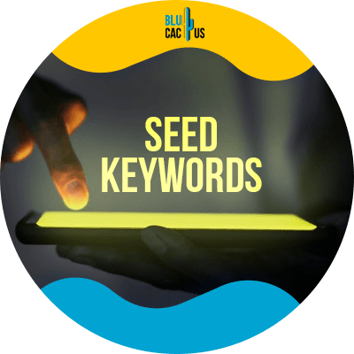 Blucactus-Starting-with-seed-keywords - How To Do Keyword Research To Get 10,000+ Visitors Per Month