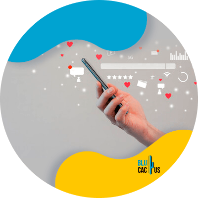 BluCactus - Lean Marketing - important data
