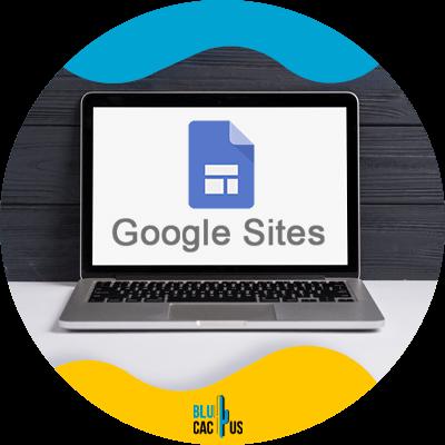 BluCactus - Google my business - google