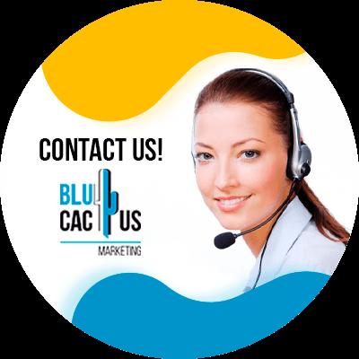 BluCactus - Google my business - contact