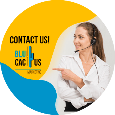 BluCactus - Engagement - contact